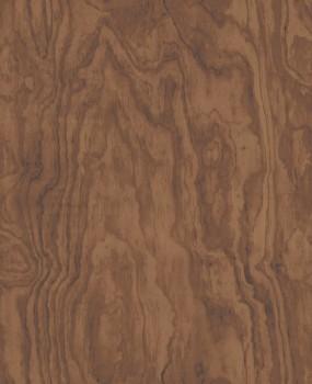 Rasch Textil Restored 23-024040 Holz Maserung Tapete braun Vlies