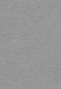Erismann Sevilla 33-5983-10, 598310 Vliestapete grau Uni Schlafzimmer