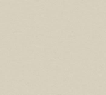 Vliestapete AS Creation Contzen Artist Ed.No.1 34216-6 Uni hell-grau