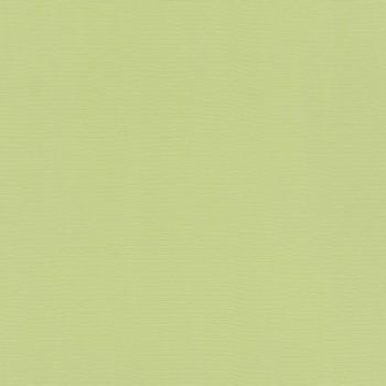 Rasch 7-411829 Hyde Park matt Vlies-Tapete grün Flur Unitapete