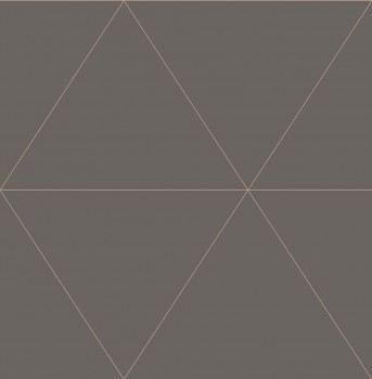 Gravity Rasch Textil 23-024224 Tapete Grafik Dreieck erdbraun