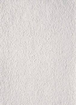 Rauhfaser Tapete Mittel Weiß Strukturiert