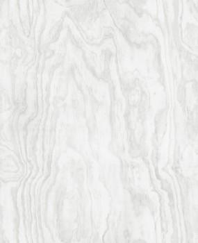 23-124039 Rasch Textil Restored Maserung Holz hell-grau Tapete