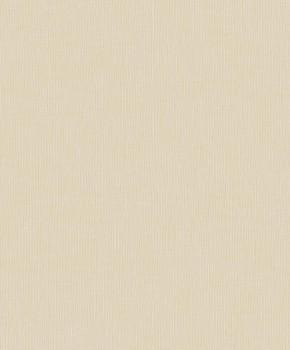 Concetto Rasch Textil 23-103053 Vliestapete elfebein Uni