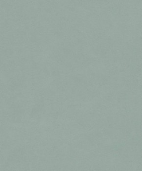 Rasch Passepartout 7-606348 Vliestapete grün Uni