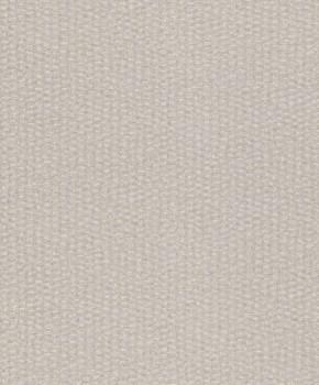 Rasch Textil Abaca 23-229324 hellgrau schimmernd Vliestapete